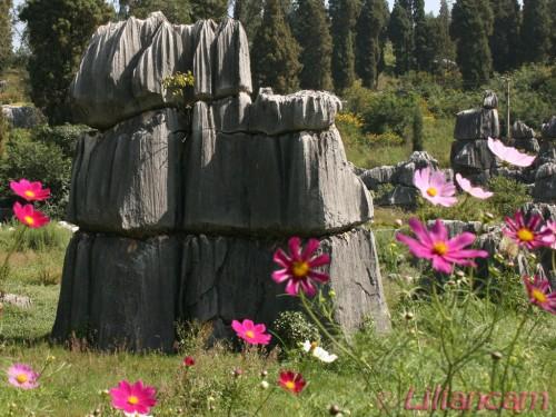 Rots met bloemen, Stenen Woud, China, Kunming, 21-09-2007